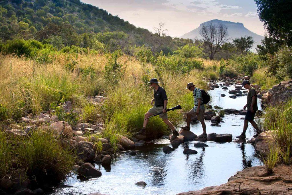Marataba Walking Safaris
